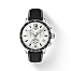 Tissot Quickster Chronograph T0954171603700