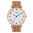 Tissot Everytime Large T1096103303200