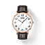 Tissot Everytime Large T1096103601201